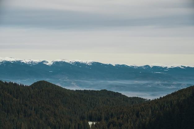 Montañas paisajes de invierno, piedra y árboles