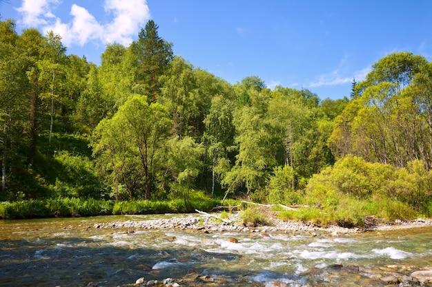 Montañas río en día soleado