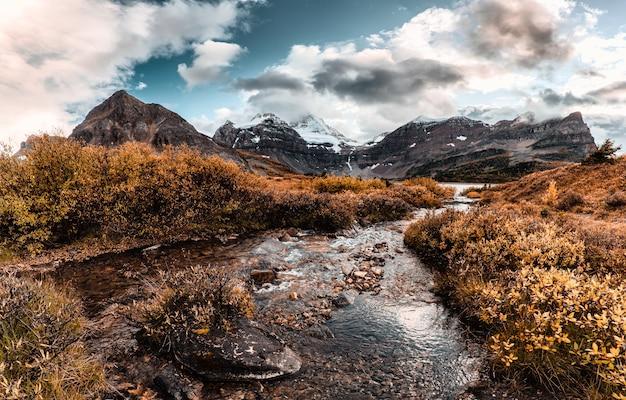 Monte assiniboine con arroyo que fluye en otoño de bosque en el parque provincial, bc, canadá