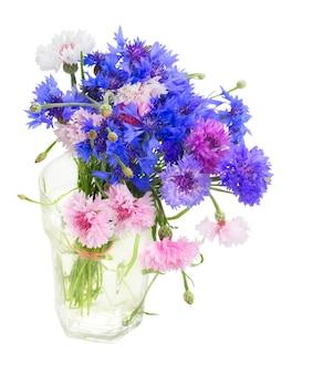 Montón de acianos azules y rosas en florero aislado