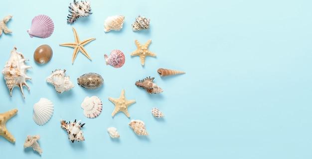Un montón de conchas marinas diferentes sobre un fondo azul. telón de fondo costero para publicidad de plantilla de agencia de viajes o postal. vista superior vintage tonificado naturaleza muerta.