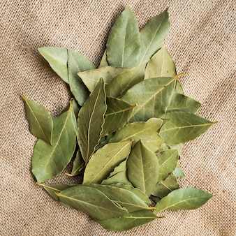 Montón de hojas de laurel