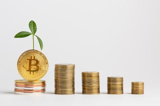 Montones de bitcoin con planta