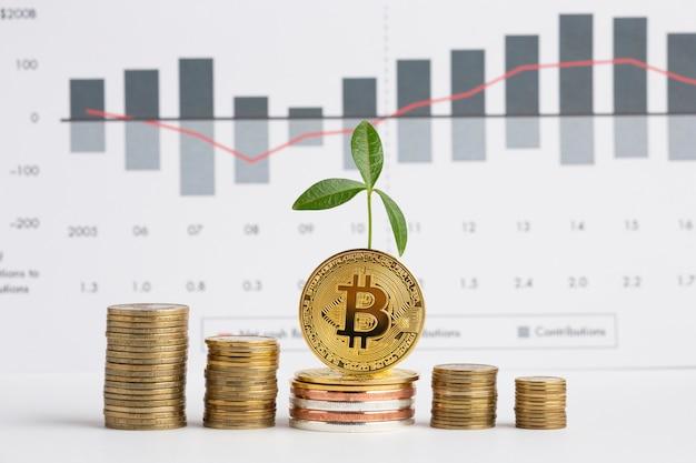 Montones de monedas con planta delante del gráfico