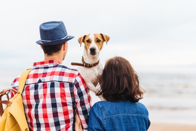 Morena hembra, macho y su perro favorito caminan juntos por la orilla del mar
