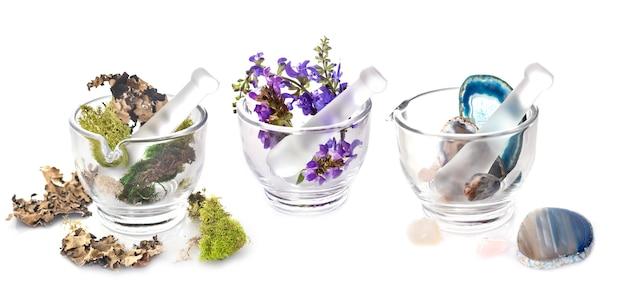 Mortero y flor, piedras y musgo.