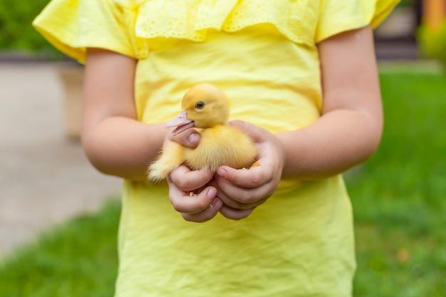 Muchacha adorable que sostiene un pequeño anadón amarillo en su mano.