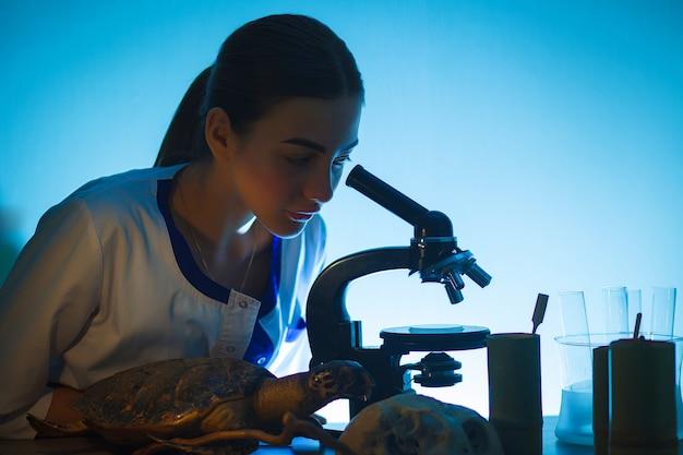 Muchacha del estudiante que mira en un microscopio, concepto del laboratorio de ciencia.