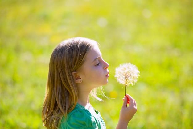 Muchacha rubia del niño que sopla la flor del diente de león en prado verde