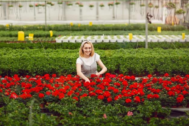 Muchacha sonriente joven hermosa, trabajador con las flores en invernadero
