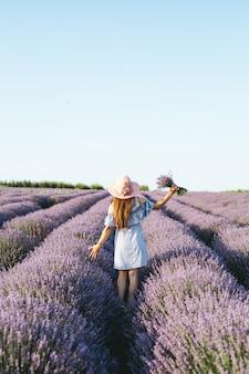 Una muchacha en vestido azul que camina a través de campos de la lavanda en la puesta del sol.