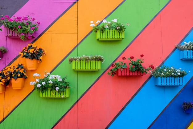 Muchas cajas de madera multicolores con flores.