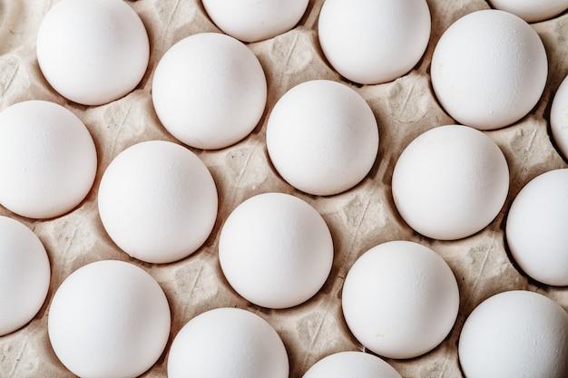 Muchos huevos de gallina blanca comida en caja de la bandeja