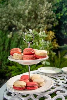 Muchos macarrones rosados y blancos en la placa fijaron en el jardín. postre dulce.