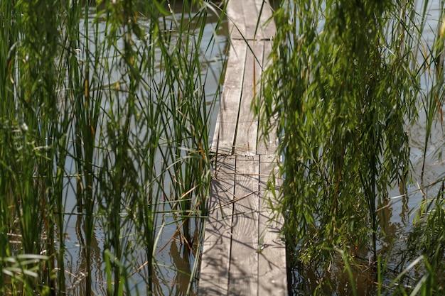 Muelle de madera en el lago en la aldea
