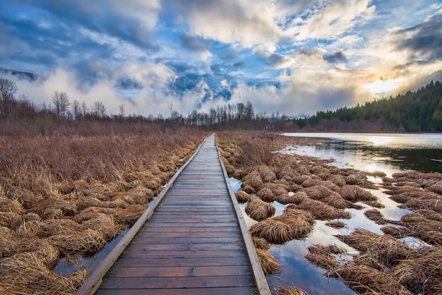 Muelle de madera marrón en medio del heno