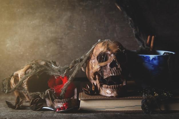 Muerte de cráneo viejo en cuarto oscuro, fotografía de naturaleza muerta