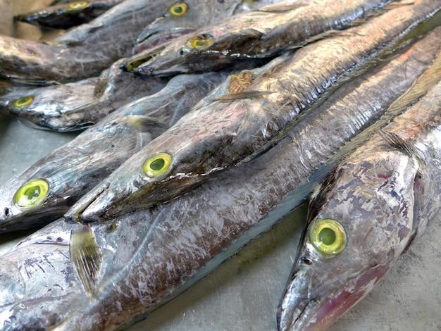 Una muestra de pescado en hielo en un mercado de pescado francés