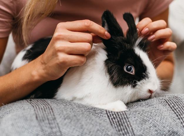 Mujer acariciando adorable conejo