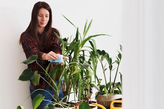 Mujer adulta de jardinería en la mesa en la habitación concepto de plantas de interior en casa