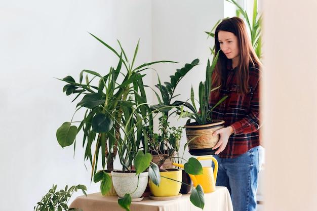 Mujer adulta media plantar en la mesa en casa plantas de interior de concepto en casa