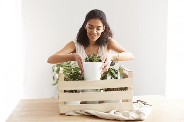 Mujer africana hermosa que sonríe tomando la maceta de la caja con las plantas sobre la pared blanca.