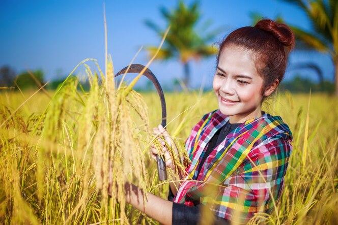 Mujer agricultora usando hoz para cosechar arroz en el campo