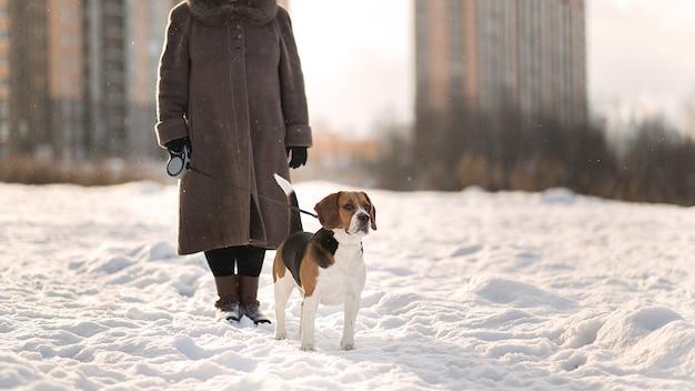 Mujer alegre caminando con un perro en un prado en invierno