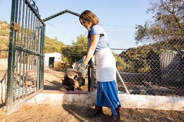 Mujer alimentando su pollo en la granja