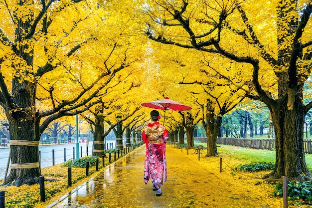 Mujer asiática vistiendo kimono tradicional japonés en la fila del árbol de ginkgo amarillo en otoño. parque de otoño en tokio, japón.