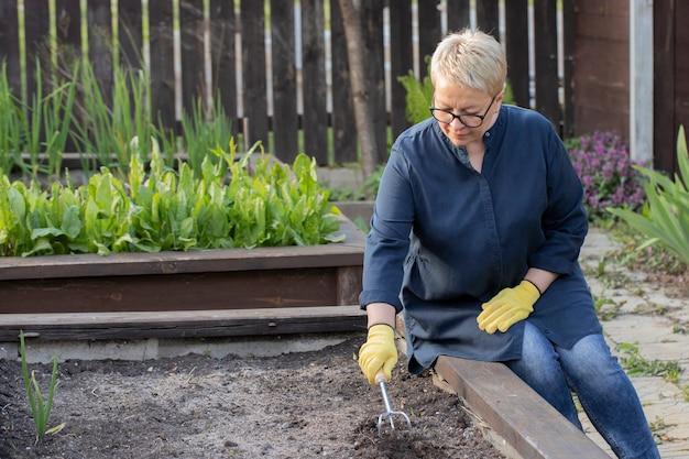 Mujer atractiva afloja el suelo fértil antes de plantar semillas en una cama de jardín elevada