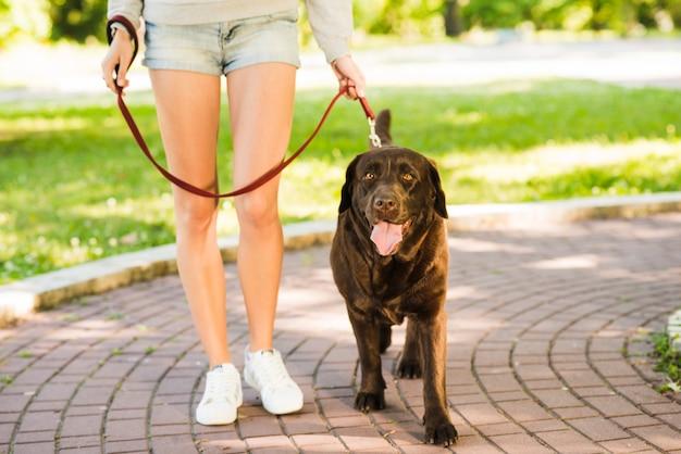 Mujer caminando con su perro en el jardín