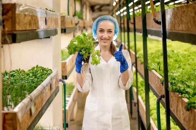 Mujer caucásica observa sobre el cultivo de ensaladas orgánicas en una granja hidropónica. concepto de cultivo de vegetales orgánicos y alimentos saludables.