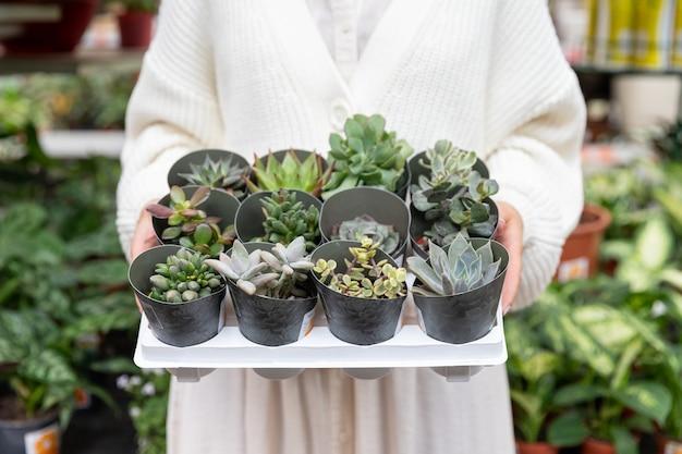 Mujer comprando cactus espinosos