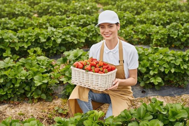 Mujer en cuclillas en invernadero con cesta de fresa