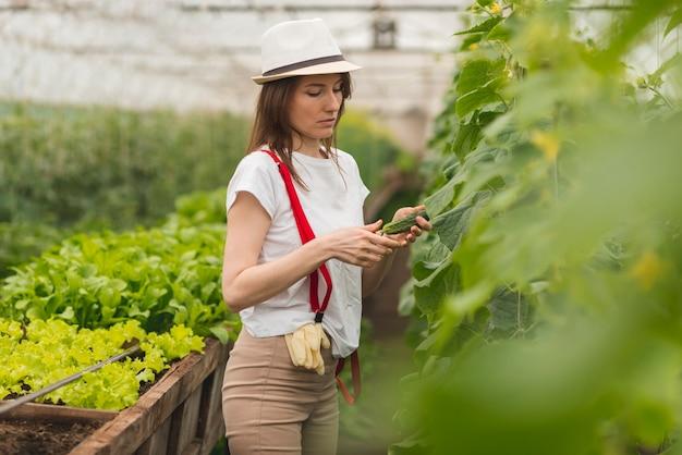Mujer cuidando plantas en un invernadero