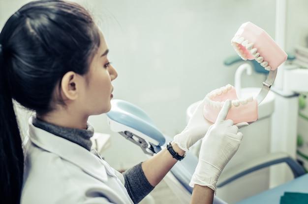 Mujer dentista explicando dientes artificiales al paciente en clínica