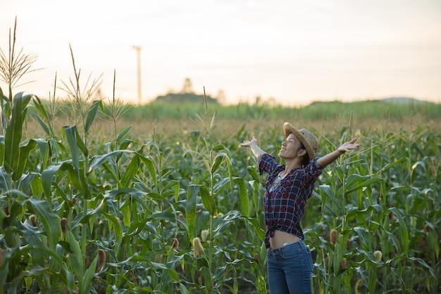 Mujer feliz disfrutando de la vida en el campo, hermoso amanecer sobre el campo de maíz. campo de maíz verde en el jardín agrícola y la luz brilla puesta de sol en la noche fondo de montaña.