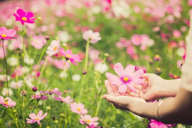 Mujer de la flor del cosmos que usaba para sostener flores, color vintage.