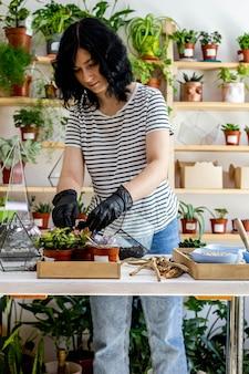 Mujer floristería trasplante suculentas en florarios de vidrio con decoración botánica composición artística