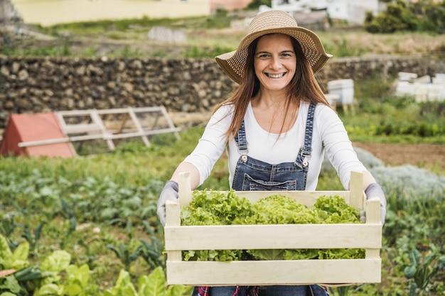 Mujer del granjero con caja de madera con lechuga orgánica fresca