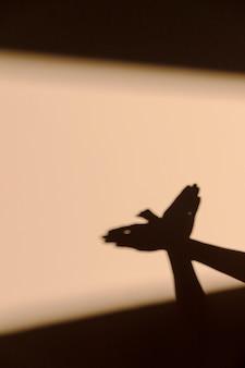 Mujer haciendo una sombra de pájaro
