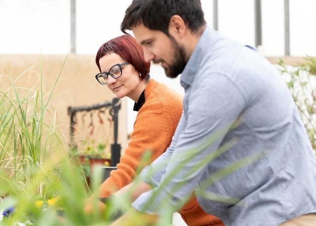 Mujer y hombre cultivando plantas
