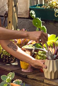 Mujer, jardinería, interior, primer plano