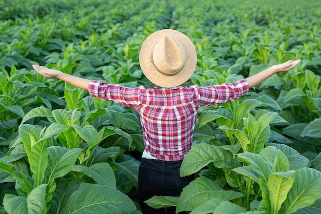 Mujer joven alegre en una plantación de tabaco.