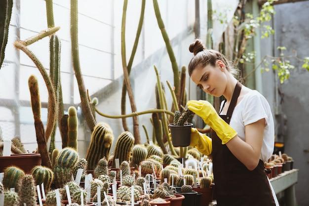 Mujer joven concentrada de pie en invernadero con planta