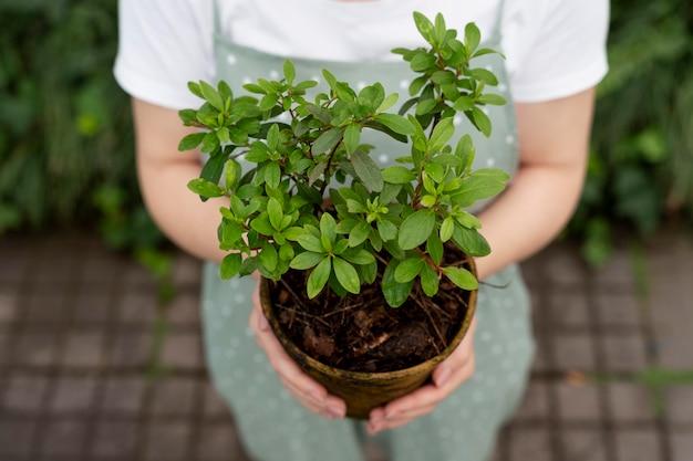 Mujer joven cuidando sus plantas