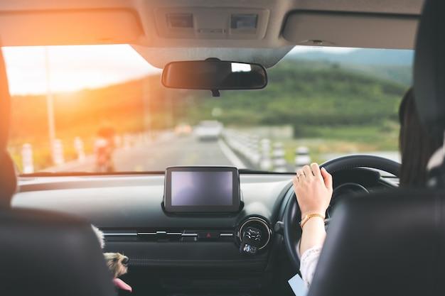 Mujer joven feliz que conduce un coche con el perro a lo largo de la carretera nacional en la puesta del sol en vista posterior.