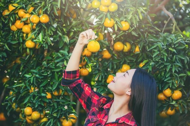 La mujer joven en el jardín cosecha la naranja en el jardín.