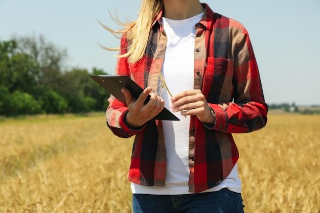 Mujer joven con portapapeles en campo de cebada.